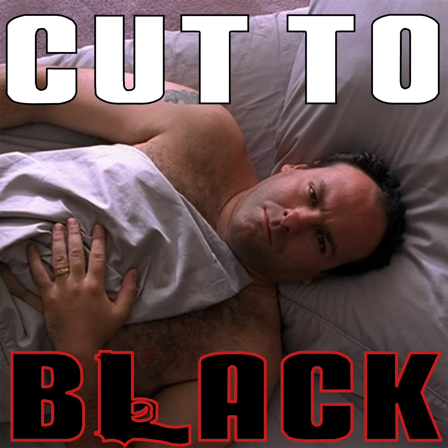 Cut To Black: A Sopranos Sitdown
